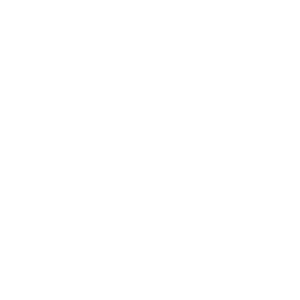 The Brand Nation logo